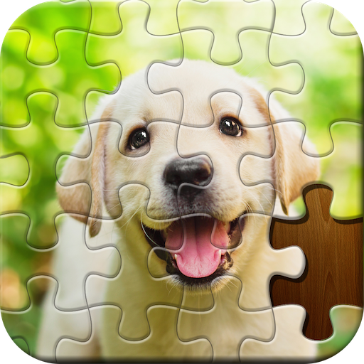 Jigsaw Puzzle 4.31.012 (MOD, Unlimited Money)