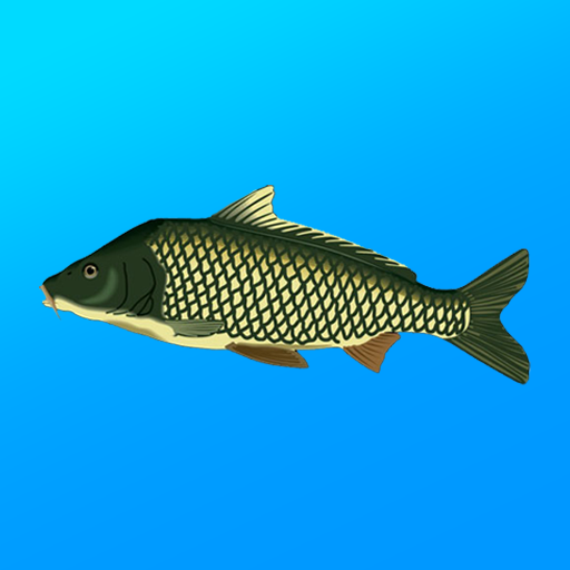 True Fishing. Fishing simulator 1.14.3.656(MOD, Unlimited Money)