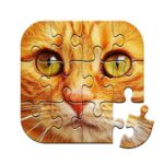 Unlimited Puzzles – free jigsaw for kids and adult 2.14.12 (MOD, Unlimited Money)