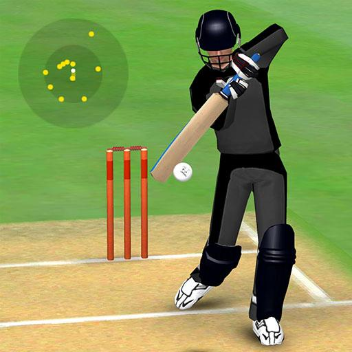 Smashing Cricket – a cricket game like none other 3.0.3 (MOD, Unlimited Money)