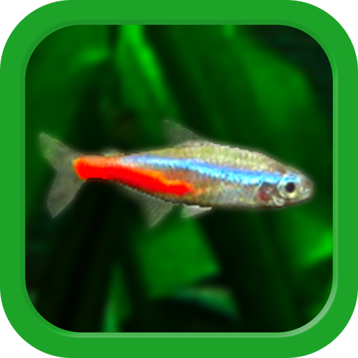 Tropical Fish Tank – Mini Aqua 2.8 (MOD, Unlimited Money)