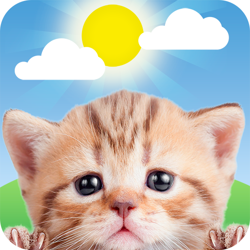 Weather Kitty – App & Widget Weather Forecast  (MOD, Unlimited Money)5.3.3