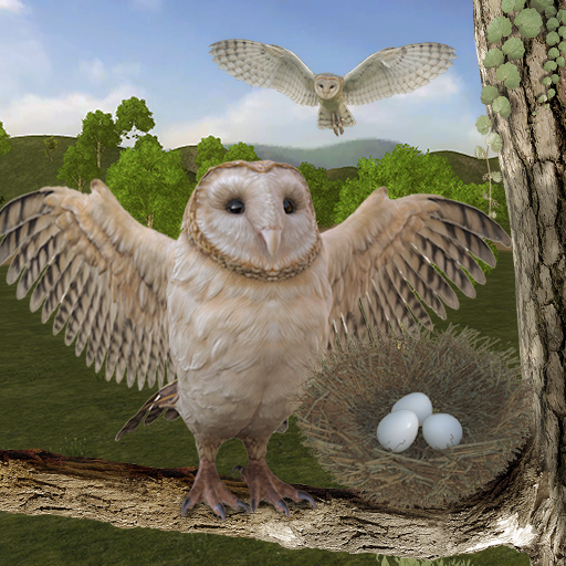 Wild Owl Bird Family Survival: Bird Simulator 3.0 (MOD, Unlimited Money)