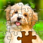 Jigsaw Puzzles Pro 🧩 – Free Jigsaw Puzzle Games 1.5.4 (MOD, Unlimited Money)