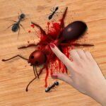 Ant Smasher Game 2.2  (MOD, Unlimited Money)