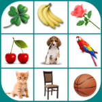 Brain game. Picture Match.  2.4.9 (MOD, Unlimited Money)