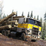 Cargo Truck Simulator Offroad: Truck Driving Games  (MOD, Unlimited Money)  1.1.9