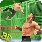 Tag Team Wrestling Superstars Fight: Hell In Cell  (MOD, Unlimited Money) 1.1.3