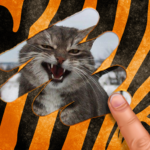 Scratch and guess the animal 9.5 (MOD, Unlimited Money)