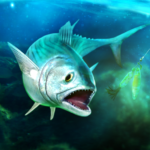 TAP SPORTS Fishing Game  (MOD, Unlimited Money) 8.1.0